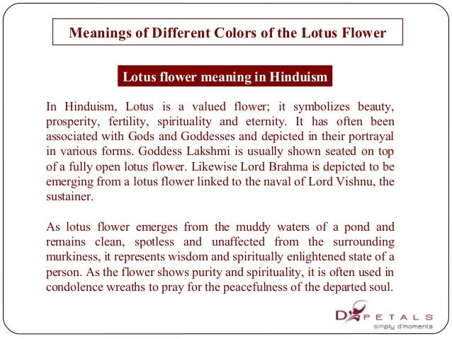 Meanings of different colors of the lotus flower meanings of different colors of the lotus flower mightylinksfo