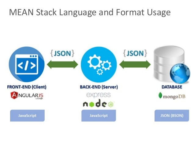 17 MEAN Stack Language And Format Usage