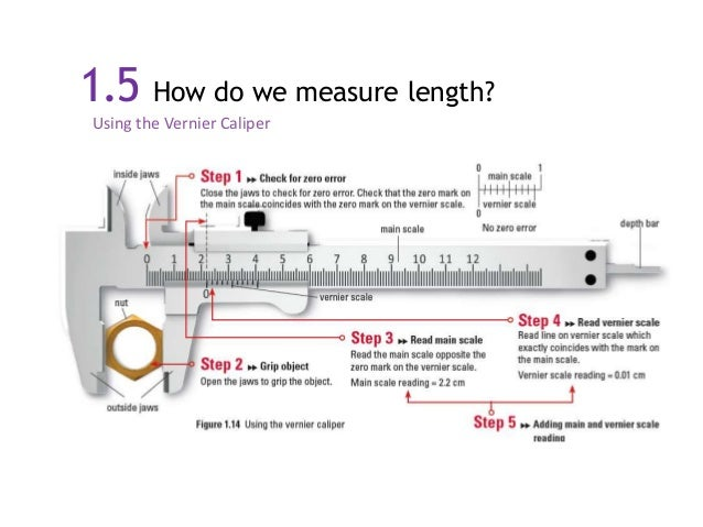 how to measure fish length