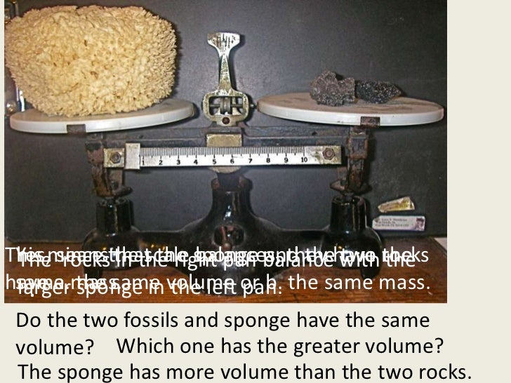 •Mass is different than size and volume.<br />This means that the sponge and the two rocks have a. the same volume or b. t...