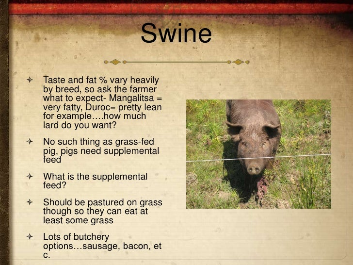 Swine   Taste and fat % vary heavily    by breed, so ask the farmer    what to expect- Mangalitsa =    very fatty, Duroc=...