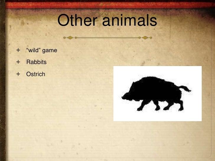 """Other animals """"wild"""" game Rabbits Ostrich"""