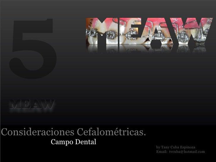 5MEAWConsideraciones Cefalométricas.          Campo Dental                                  by Tany Cuba Espinoza         ...