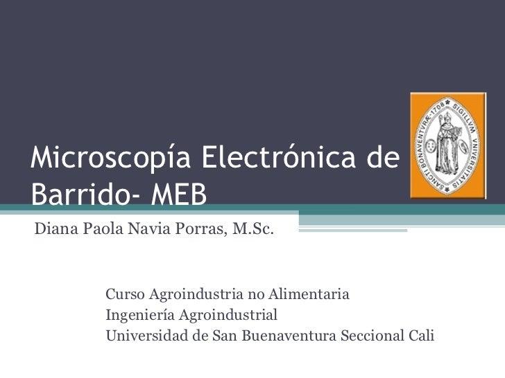 Microscopía Electrónica deBarrido- MEBDiana Paola Navia Porras, M.Sc.         Curso Agroindustria no Alimentaria         I...
