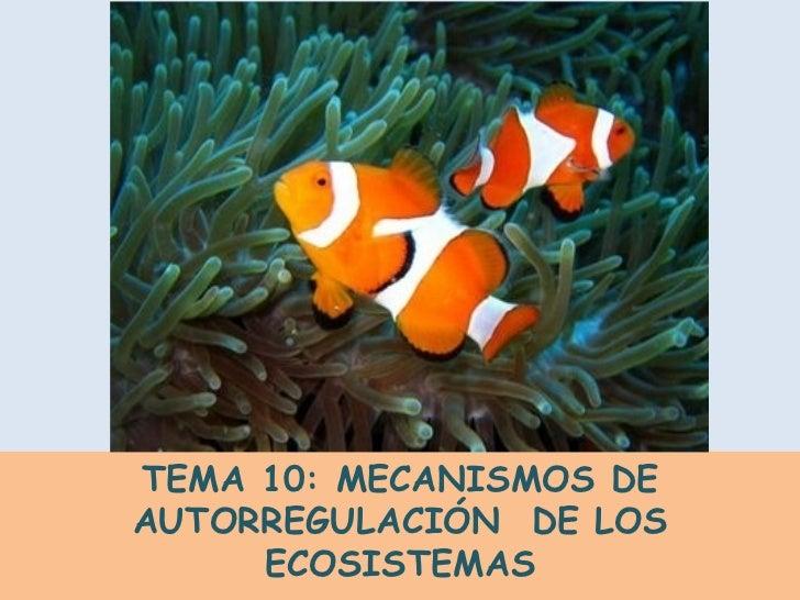 TEMA 10: MECANISMOS DE AUTORREGULACIÓN  DE LOS ECOSISTEMAS