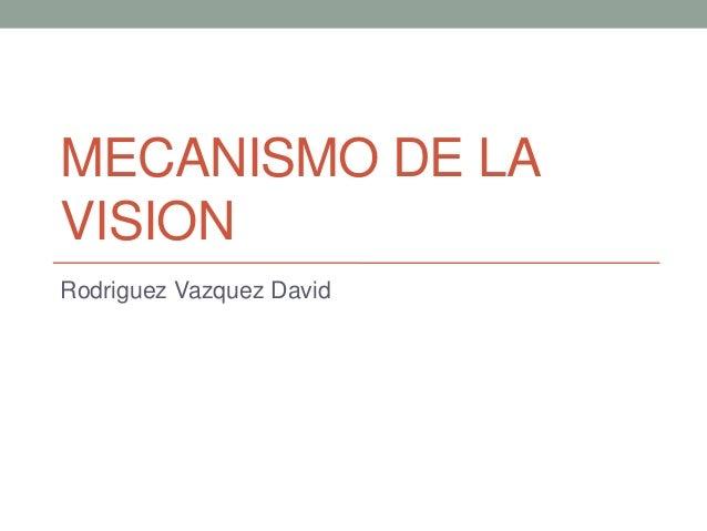 MECANISMO DE LA VISION Rodriguez Vazquez David