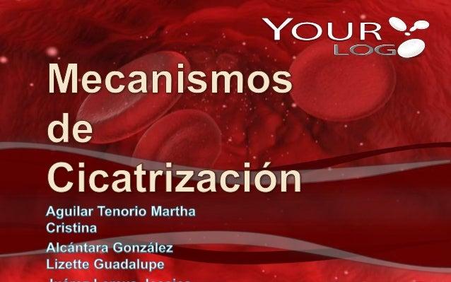 ANTECEDENTES DE LA CICATRIZACIÓN
