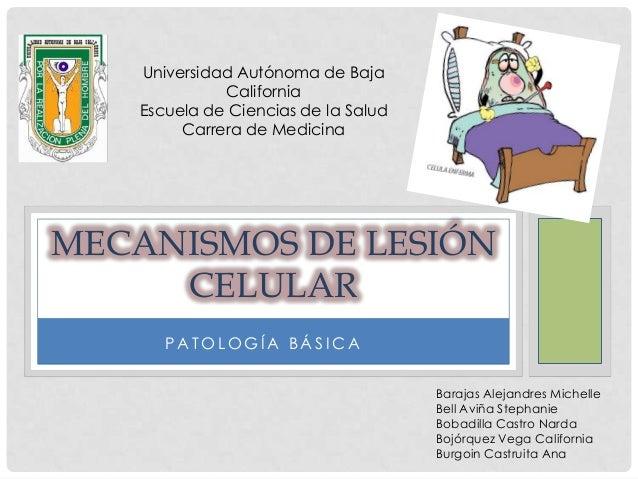 Universidad Autónoma de Baja             California   Escuela de Ciencias de la Salud        Carrera de MedicinaMECANISMOS...