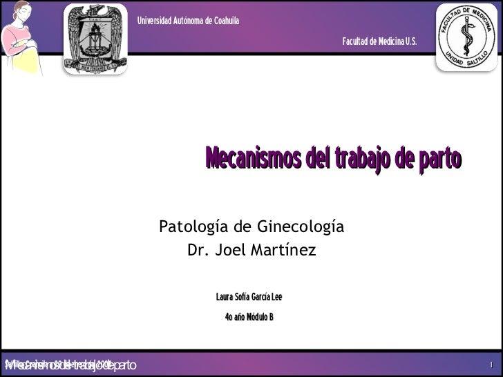 Mecanismos del trabajo de parto Patología de Ginecología Dr. Joel Martínez Laura Sofía García Lee 4o año Módulo B Universi...
