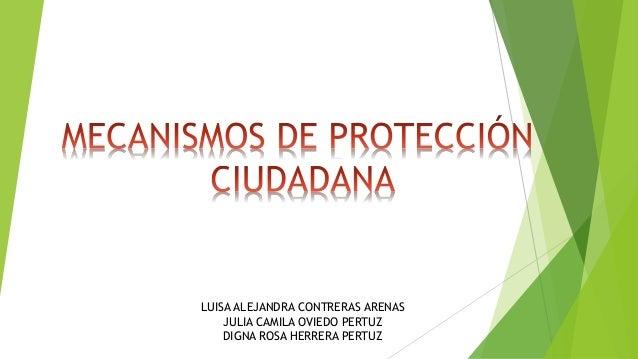 LUISA ALEJANDRA CONTRERAS ARENAS JULIA CAMILA OVIEDO PERTUZ DIGNA ROSA HERRERA PERTUZ