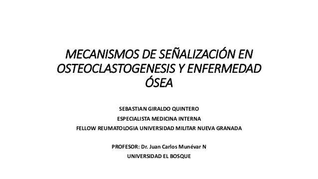 MECANISMOS DE SEÑALIZACIÓN EN OSTEOCLASTOGENESIS Y ENFERMEDAD ÓSEA SEBASTIAN GIRALDO QUINTERO ESPECIALISTA MEDICINA INTERN...