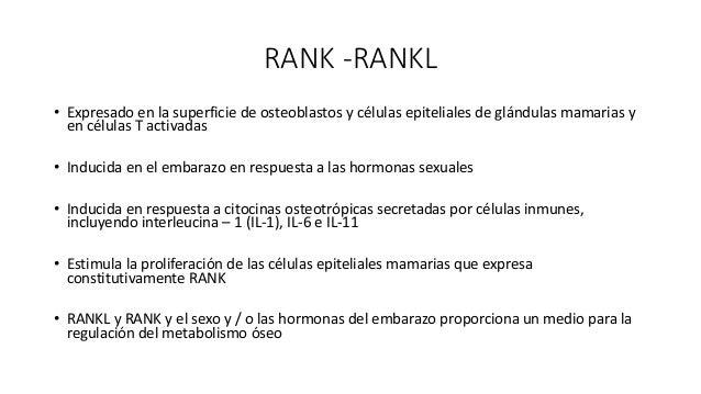 RANK-RANL-FNKB • La estimulación da como resultado la activación de NF-kB. • se requiere TRAF6 para la formación y activac...