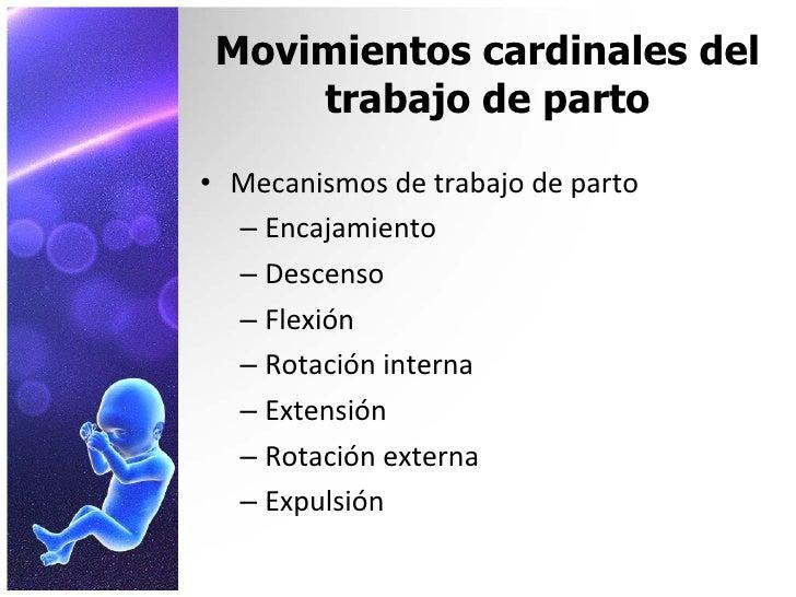 Mecanismos de trabajo de parto for Trabajo de interna en barcelona