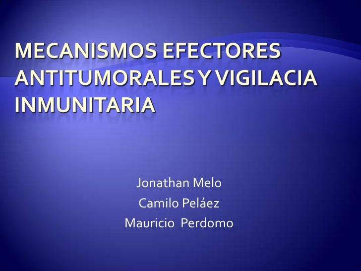 MECANISMOS EFECTORES ANTITUMORALES Y VIGILACIA INMUNITARIA<br />Jonathan Melo<br />Camilo Peláez<br />Mauricio  Perdomo<br />