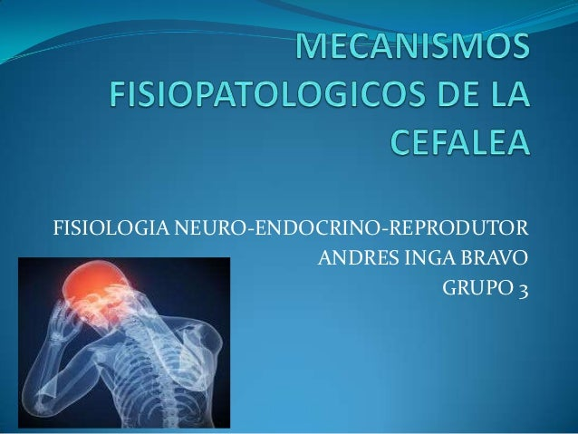 FISIOLOGIA NEURO-ENDOCRINO-REPRODUTOR                     ANDRES INGA BRAVO                               GRUPO 3