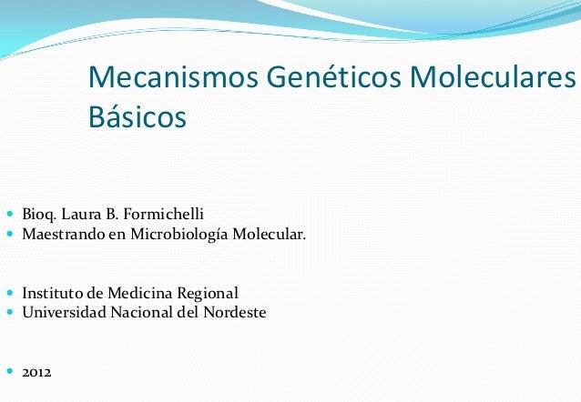 Mecanismos Genéticos Moleculares          Básicos Bioq. Laura B. Formichelli Maestrando en Microbiología Molecular. Ins...