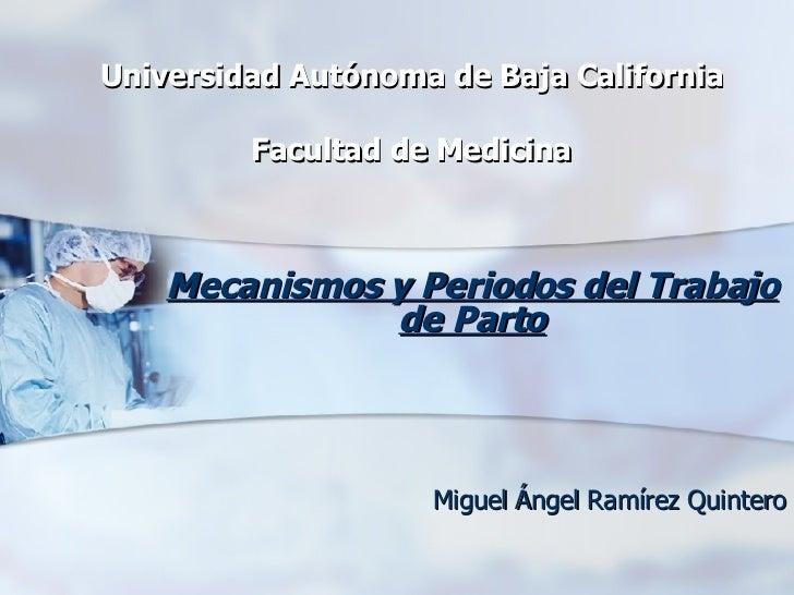 Universidad Autónoma de Baja California Facultad de Medicina Mecanismos y Periodos del Trabajo de Parto Miguel Ángel Ramír...
