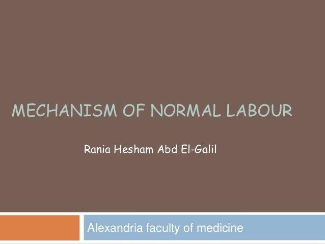 MECHANISM OF NORMAL LABOUR Alexandria faculty of medicine Rania Hesham Abd El-Galil