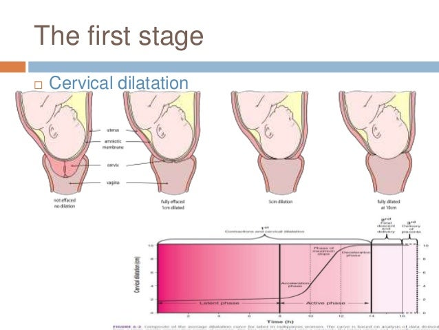 The first stage  Cervical dilatation