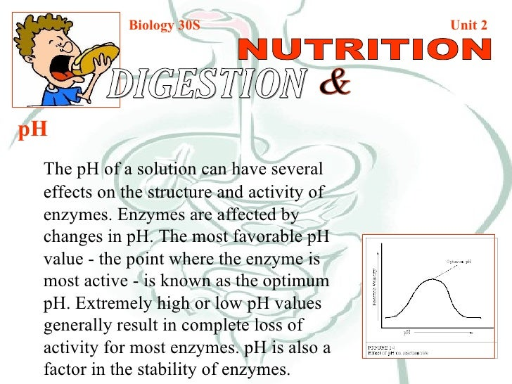 Biology 30S   Unit 2 DIGESTION  & NUTRITION pH The pH of a solution can have several effects on the structure and activity...