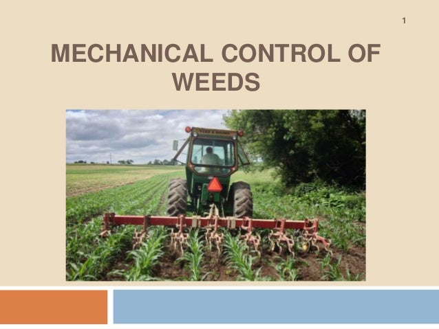 MECHANICAL CONTROL OF WEEDS 1
