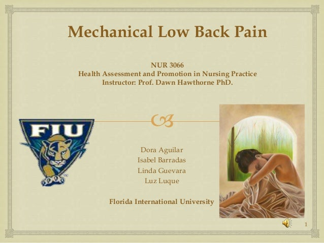 Mechanical Low Back Pain                        NUR 3066 Health Assessment and Promotion in Nursing Practice        Instru...