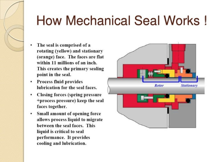 Mechanical Seal Vs Gland Packing on Parts Of A Plant Ppt