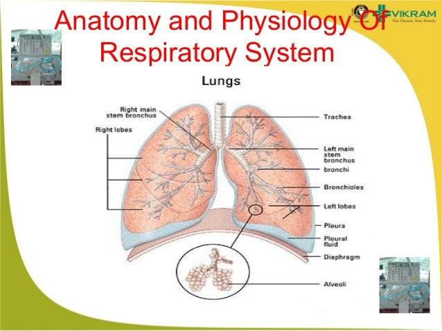 Mechanical ventilation Slide 3