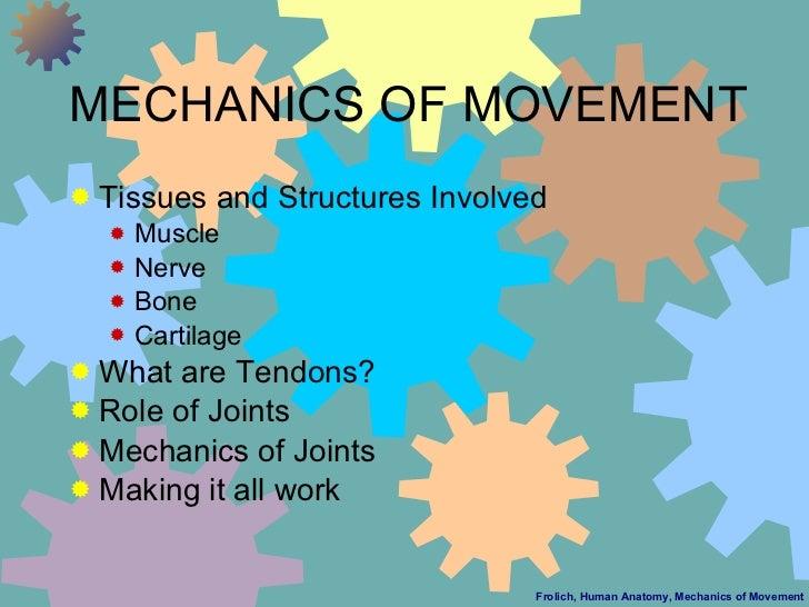 MECHANICS OF MOVEMENT <ul><li>Tissues and Structures Involved </li></ul><ul><ul><li>Muscle </li></ul></ul><ul><ul><li>Nerv...