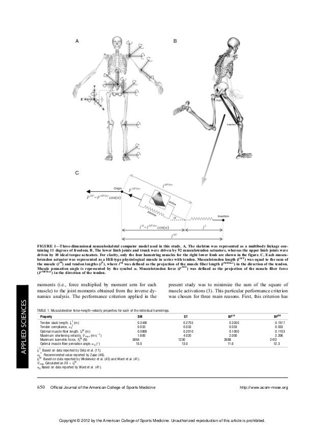 Hamstring Force Diagram Basic Guide Wiring Diagram