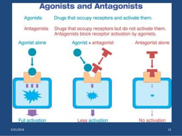drug actions Drugscom's web-based discussion board for questions and comments on latest drug related news, fda approvals and clinical trials forum actions: view this forum's rss feed.