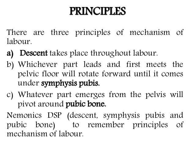 Mechanism of normal labour Slide 3