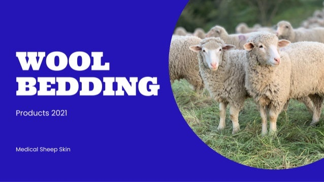 Medical Sheep Skin 2021 | Products | WOOL BEDDING \ Order Now.