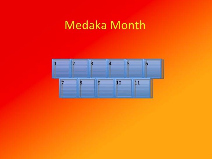 Medaka Month 1 2 3 4 5 6 7 8 9 10 11