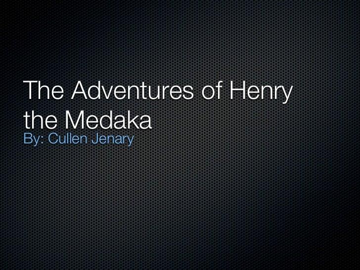 The Adventures of Henrythe MedakaBy: Cullen Jenary