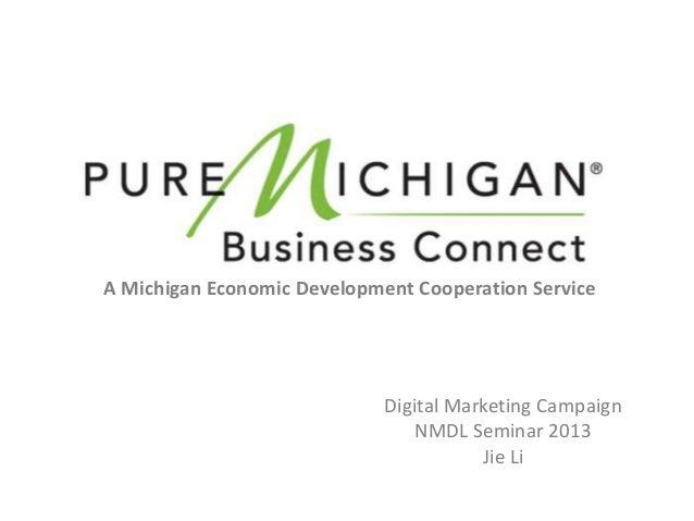 A Michigan Economic Development Cooperation Service                             Digital Marketing Campaign                ...