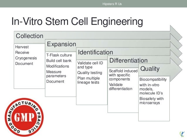 In-Vitro Stem Cell Engineering Collection Harvest Receive Cryogenesis Document Expansion T-Flask culture Build cell bank M...