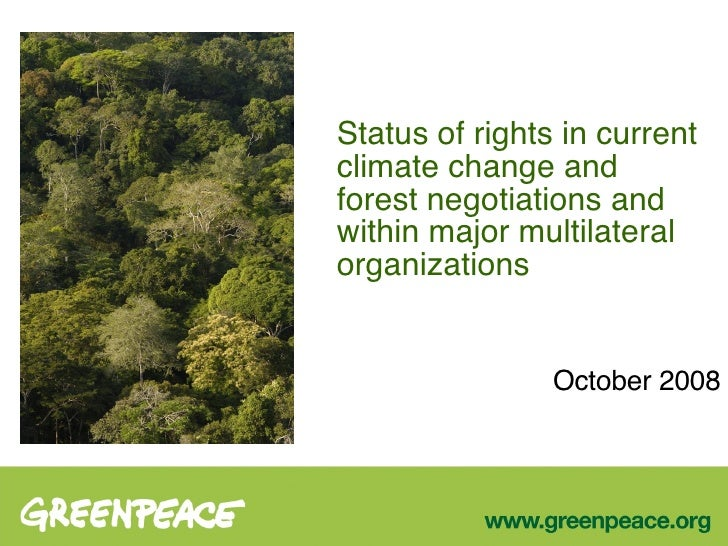 Status of rights in current climate change and forest negotiations and within major multilateral organizations October 2008