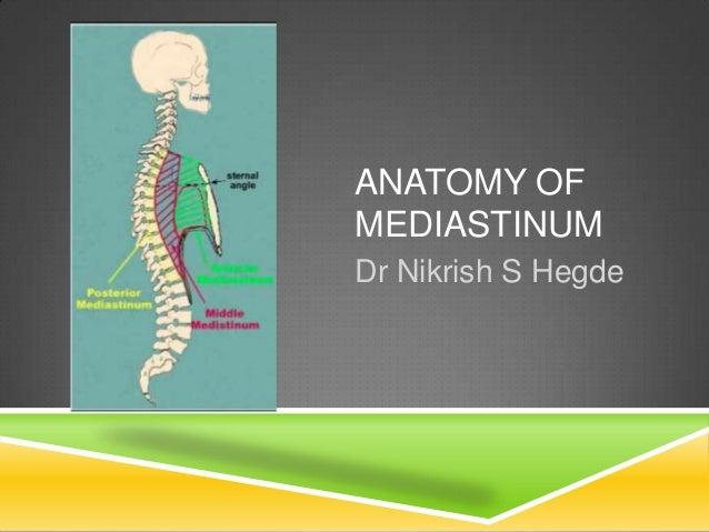 Ct Anatomy Of Normal Mediastinum Made Easy