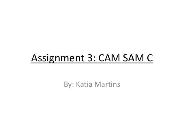 Assignment 3: CAM SAM C By: Katia Martins