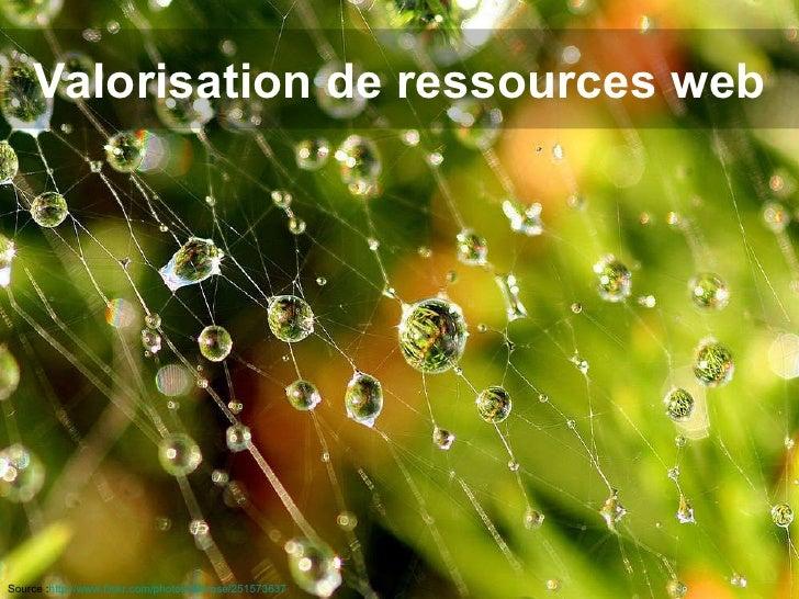 Valorisation de ressources web Source : http://www.flickr.com/photos/lidarose/251573637