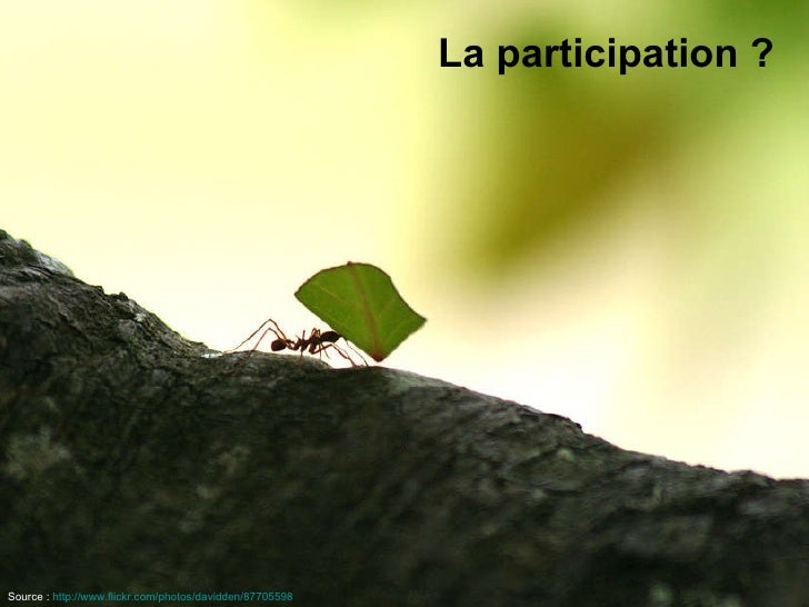 La participation ? Source :   http://www.flickr.com/photos/davidden/87705598