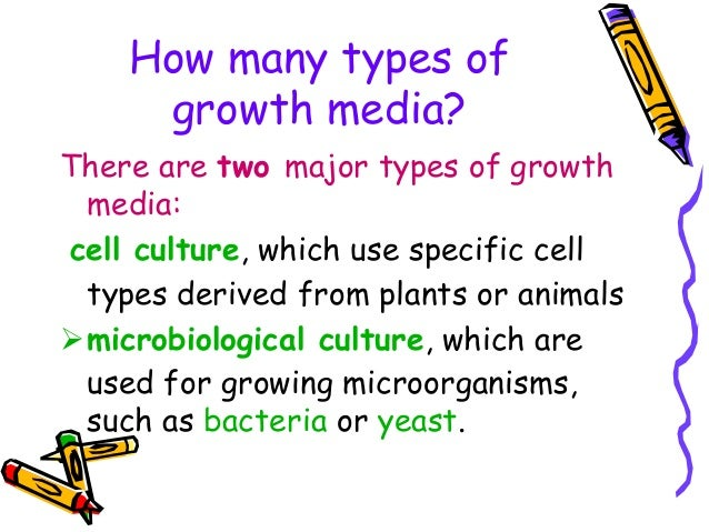 TYPES OF MEDIA IN MICROBIOLOGY DOWNLOAD