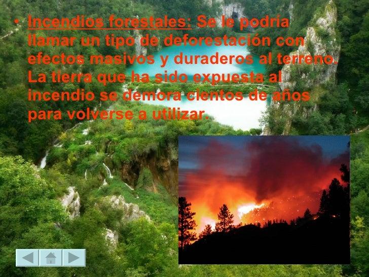 <ul><li>Incendios forestales:  Se le podría llamar un tipo de deforestación con efectos masivos y duraderos al terreno. La...