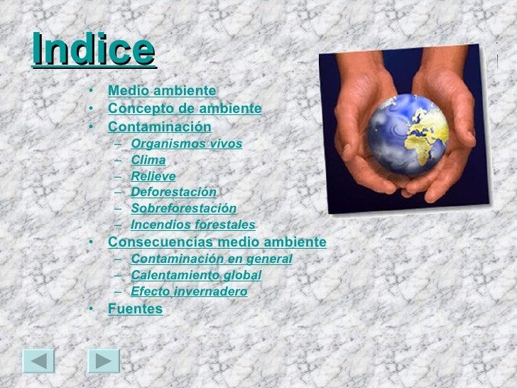 Indice <ul><li>Medio ambiente </li></ul><ul><li>Concepto de ambiente </li></ul><ul><li>Contaminación </li></ul><ul><ul><li...