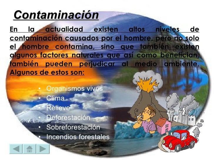 En la actualidad existen altos niveles de contaminación causados por el hombre, pero no solo el hombre contamina, sino que...