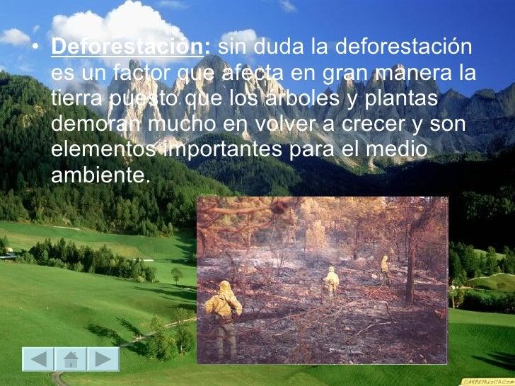 <ul><li>Deforestación :  sin duda la deforestación es un factor que afecta en gran manera la tierra puesto que los árboles...