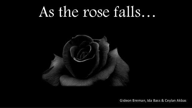 As the rose falls… Gideon Breman, Ida Bass & Ceylan Akbas