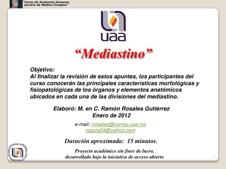 """""""Curso de Anatomía Humana: carrera de Médico Cirujano""""                               """"Mediastino""""    Objetivo:    Al final..."""