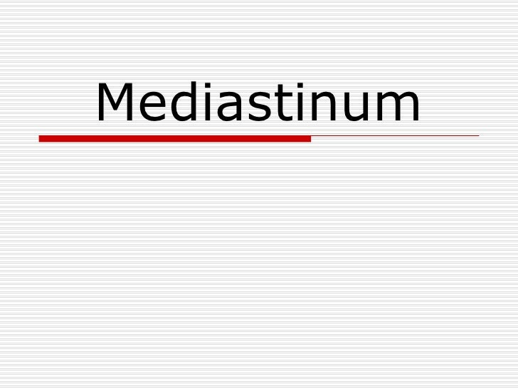 Mediastinum